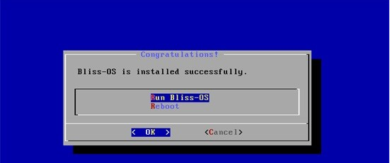 install bliss os on pc