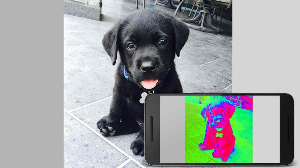 thermal infrared camera app-fx
